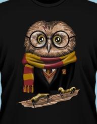 Owl Potter