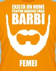 Fara barbi'