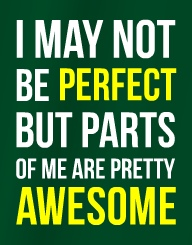 I May Not Be Perfect'