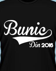 Bunic Din 2016