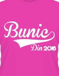 Bunic Din 2016'