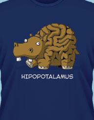 Hipopotalamus'