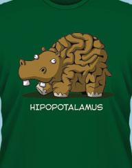 Hipopotalamus