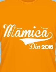 Mamica Din 2016'
