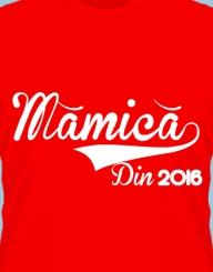Mamica Din 2016