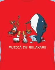 Muzica de Relaxare'