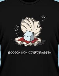 Scoica Nonconformista'
