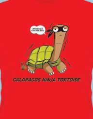 Galapagos ninja tortoise